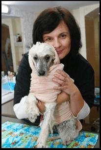 Frida Hundesalon - Gartz